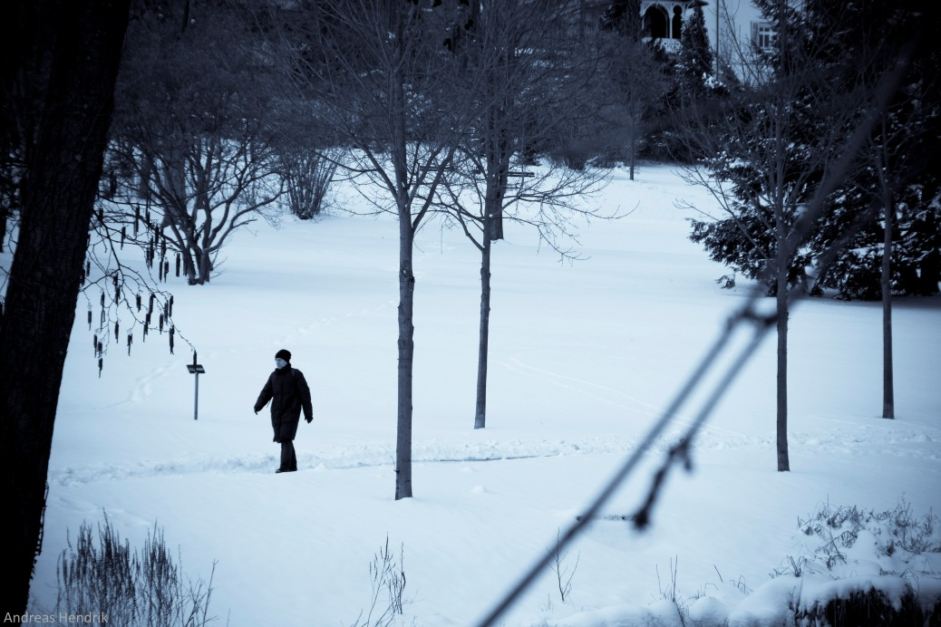 Winter-Frühling-2
