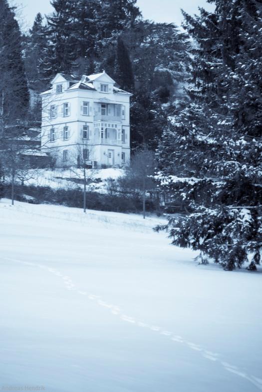 Winter-Frühling-4