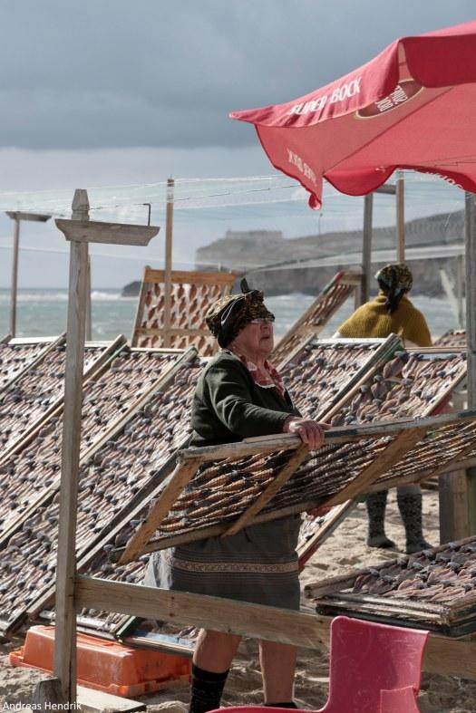 Fischer-Frauen aus Nazaré trocknen Fisch-11
