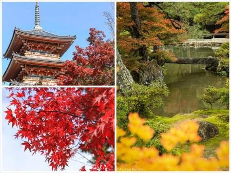 Big Red-21_3Foto_Collage_Tempel_Ahornblatt_Zen