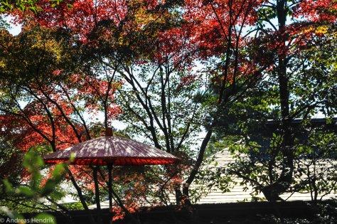 Big Red-roter Japanischer Schirm