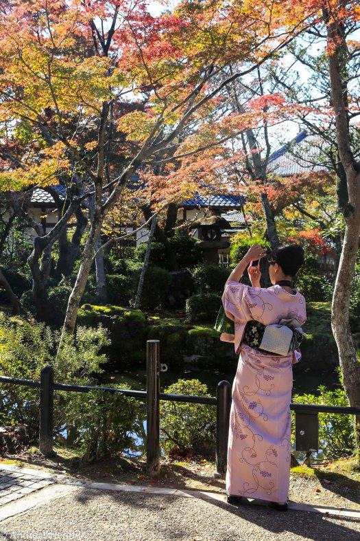Japanische Ladies-7