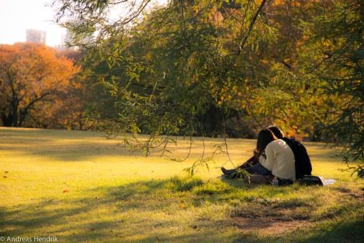 Paare im Park unter Bäumen