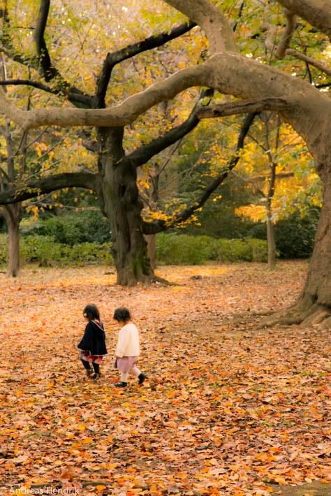 Paare im Park, kleine Kinder im Laub