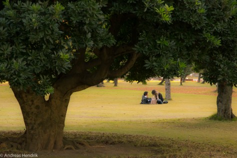 Paare im Park, Picknick
