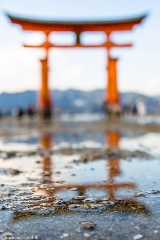 Torii Itsukushima-Schrein