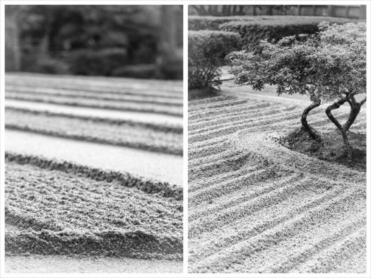 Zen Formen-Sand_Baum_Foto_Collage