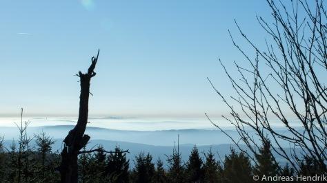 20141018_Nebel um den Feldberg-4