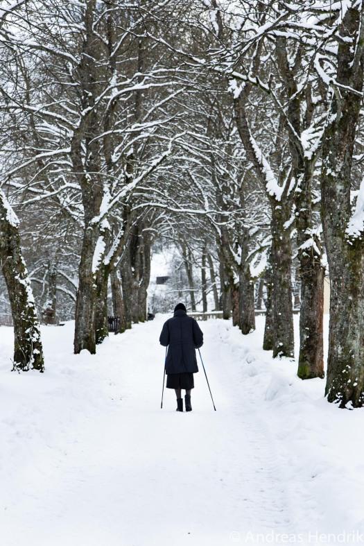 20150131_einsame Frau spaziert im Schnee