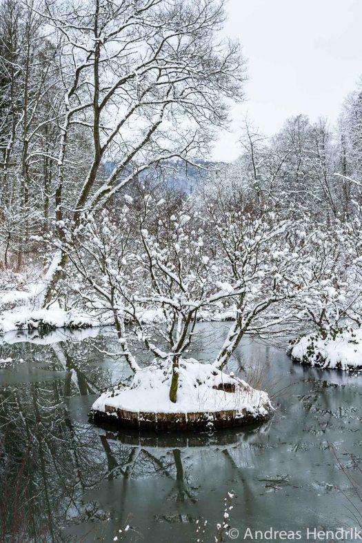 20150131_Insel im Schnee See Schlosspark Bad Berleburg