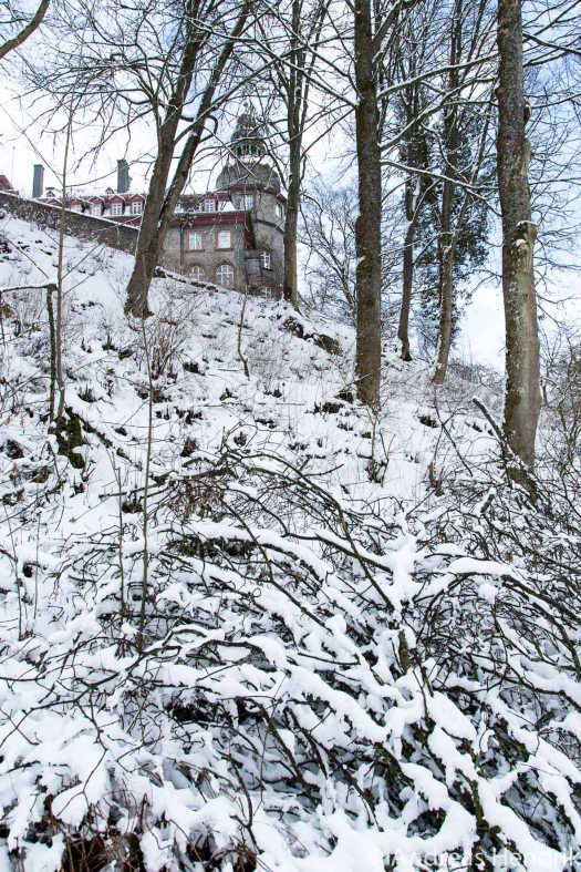 20150131Schloss  Schlosspark Bad Berleburg