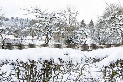 20150131Zaun  Schlosspark Bad Berleburg