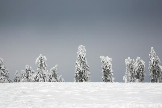 20150206_Schneewittchen und die 7 Zwerge am Großen Feldberg Taunus
